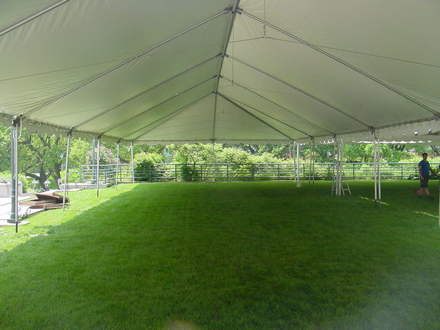 Img & Frame Style Tents